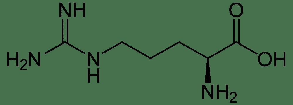 Arginmax L-Arginin