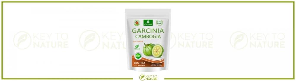 Garcinia Cambogia Test